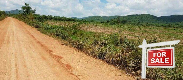 Acheter un terrain au Cambodge en tant qu'étranger : prête-nom, bail ou création d'entreprise