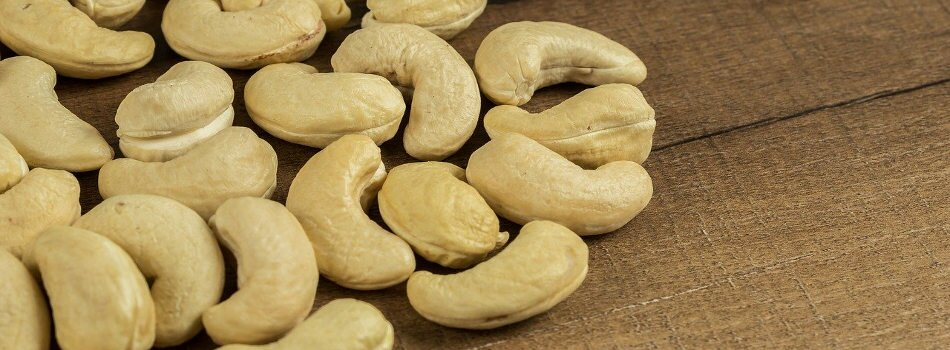 Cashew nut producers for export in Vietnam