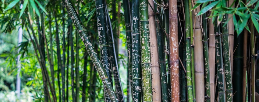 Bamboo products made in Vietnam