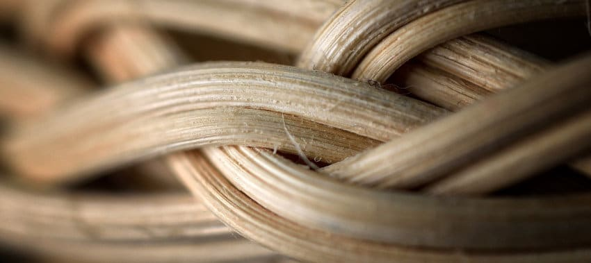 Manufacturers and factories for Rattan in Vietnam