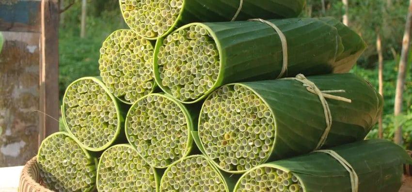 Pailles sourcing : lepironia bambou au Vietnam