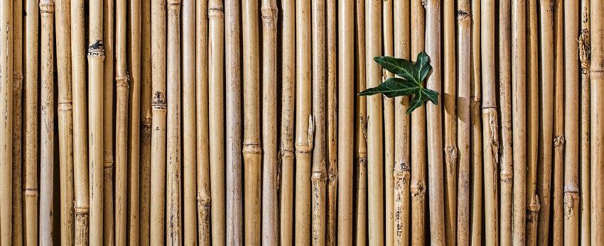Produits fabriqués au Vietnam en bambou